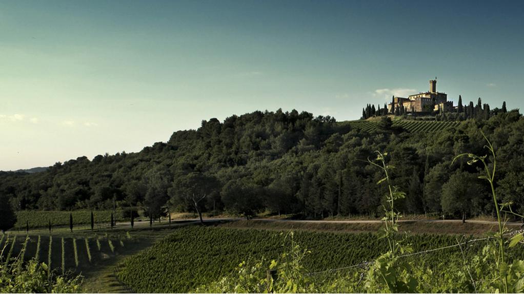 castello_banfi_landschaftsbild