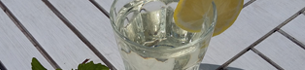 blog_teaser_bild_Grappa_tonic